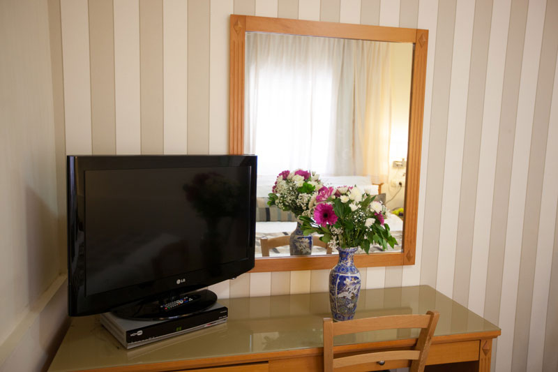 Flowers and flat TV in the room